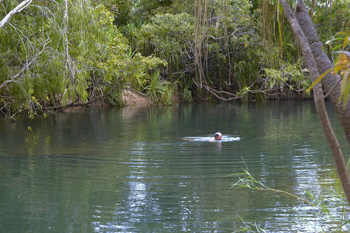 We can help you source, plan and book your own custom made Kakadu and Top End Charter with our experiered and friendly team based in Darwin. Consider your   itinerary to include     Katherine Gorge ,Litchfield Park, Douglas Hot Springs and much more